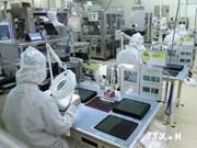 Measures discussed to boost Vietnam-Japan trade ties