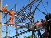 Nearly 6 percent of energy consumption saved in five years