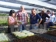 Dong Thap, Dutch Emmen city partner in education, floriculture