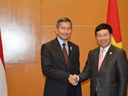 Deputy PM meets Singaporean Foreign Minister in Kuala Lumpur
