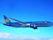 Vietnam Airlines domestic market share plummets