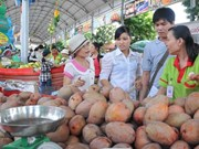 Five key fruits developed in southern region