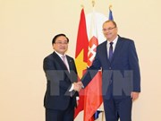 Vietnam, Slovakia look to stronger relations