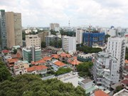 Local property market continues strong recovery in November