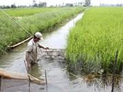 Workshop boosts financial assistance for aquaculture in Mekong Delta