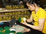 Record year for starting business in Vietnam
