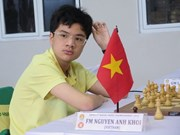 Vietnam shines at regional chess championship