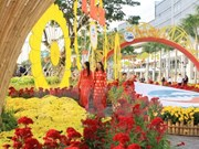 HCM City to welcome New Year with spring flower festival