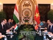 Vietnam, Hungary further ties across wide-ranging areas