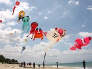 Ninh Thuan to hold international kiteboard event
