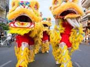 Soc Trang hosts first regional lion, dragon dance championship