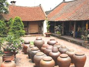Preservation of Duong Lam ancient village