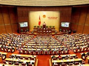 HCM City: Voters pin high hope on new National Assembly