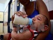 Zika virus yet to enter Vietnam
