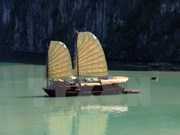 Quang Ninh to end overnight docking in Ha Long Bay