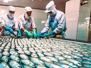 Vietnam's seafood exports to benefit from TPP