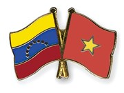 Seminar traces Vietnam – Venezuela friendship