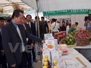 Trade fair underway in Soc Trang