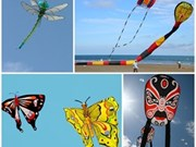 International kite festival to be held at Ecopark