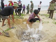 Urgent assistance for affected farmers following unusual fish death