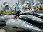 Vietnam's tuna exports decline 5.5 percent in Q1