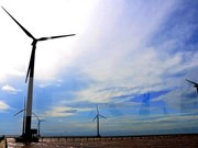 Renewable energy may power Vietnam by 2050