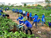 Nationwide activities to respond to World Environment Day