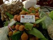 Firms boost fresh lychee exports via Lao Cai border gate