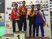 Vietnam dominates Asian Pencak Silak champs
