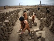 Thua Thien-Hue to prevent child labour abuse with Australia's support