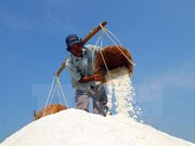 Deputy PM urges salt purchases to help farmers