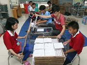 Vietnam observes UN convention on rights of the disabled