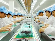 Vietnam-Taiwan economic links thrive