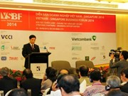 Vietnam – Singapore investment cooperation promoted