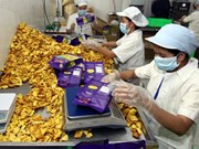 Dong Nai enterprises in need of more workers