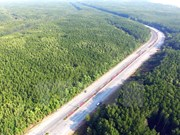 Vietnam has over 14 million hectares of forest: ministry