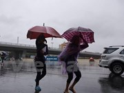 Vietnam's mainland to suffer up to two storms in August