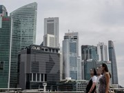 Singapore arrests 44 involved in illegal employment