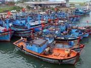 Fishing fleet in Thanh Hoa boosts capacity