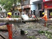 Northern provinces recover from tropical storm