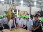 Major wood processing factory operational in Nghe An province