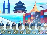 China-ASEAN expo opens in Nanning