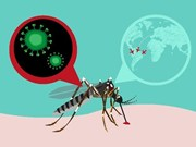 Zika infection case in Japan is not Vietnamese