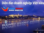 Vietnamese businesses in Europe meet in Hungary