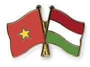 Exchange programme boosts Vietnam-Hungary cooperation