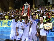 Hanoi T&T triumph over V.League 2016
