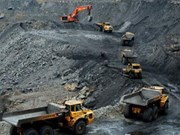 Vietnam's coal imports doubled this year