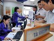 Restructuring wipes out 25 percent of Vietnam's securities firms