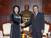 NA backs cooperation between Vietnamese, Lao fronts