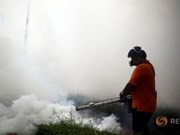 Thailand investigates four Zika-linked microcephaly cases